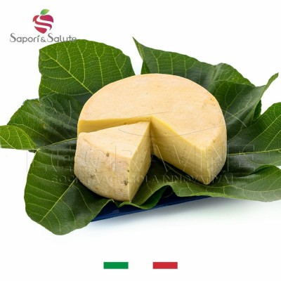 WHITE VENUS - bloomy rind cheese